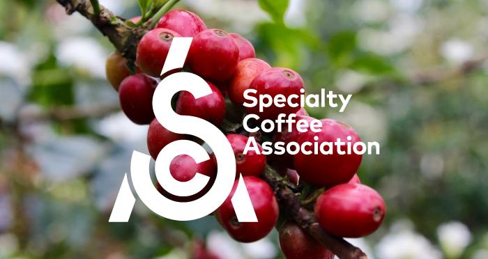 L'association du café de spécialité